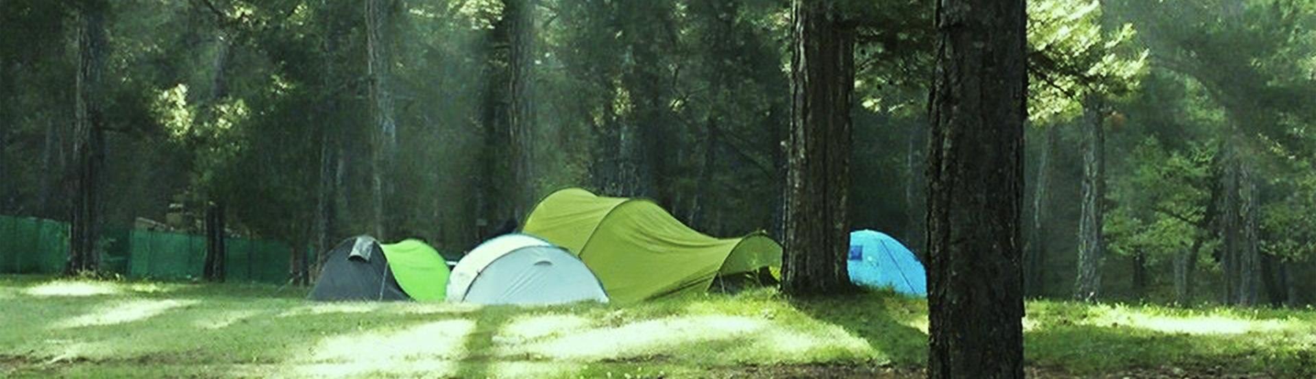 camping-ladehesa